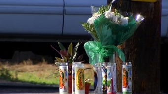 Family, Friends Mourn Teen Found Dead in Vista