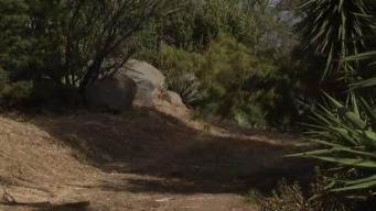 Woman Choked by Attacker on East County Trail
