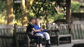 Video Shows Woman Capture, Bag Live Birds in Philly Park