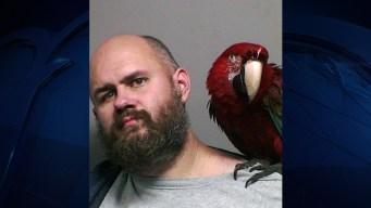 """""""Bird"""" the Bird Poses in Man's Mug Shot After Unlucky Arrest"""