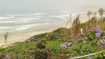 Sewage Leaks Into Ocean in Del Mar, Causes Beach Closures