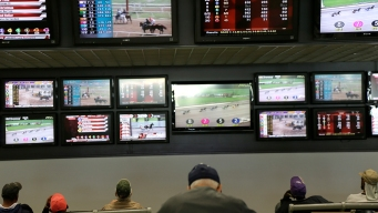 Horse Racing Bets Court Ruling Boosts the Sport