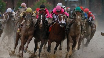 Kentucky Derby Officials Deny Appeal for Disqualified Horse