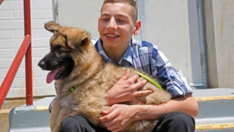 Camp Pendleton Marine's Son Receives Service Dog