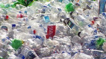 New Rules for Cashing in Recyclables