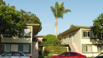 Mother, Son Held at Gunpoint in PB Home Invasion