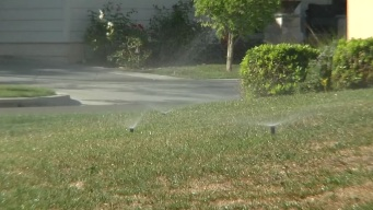 New Water Restrictions for Carlsbad