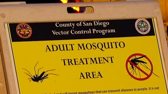 Zika Patient +Aedes Mosquitoes Prompt Spraying in Mount Hope