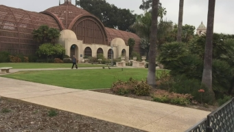 Councilmember, Conservancy Push for Balboa Park Facelift