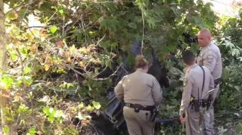 1 Killed When Family of 4 Crashes Down Embankment