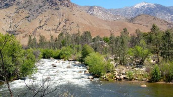 11-Year-Old Girl Drowns in Kern River
