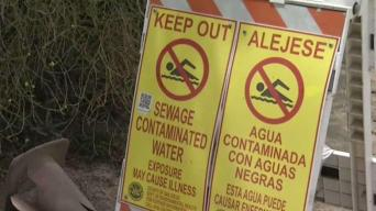 Coronado City Council Considers Joining Sewage Spill Lawsuit