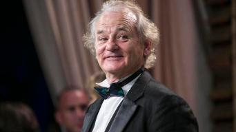 What About Bill? Murray Playing North County Show