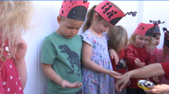 Children Release 13,000 Ladybugs on Earth Day