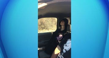Police Catch Driver Using Mannequin to Drive in Carpool Lane