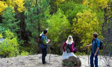Big Bear Autumn Deals