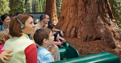 Ending Forever: Mariposa Big Tree Tram Tour