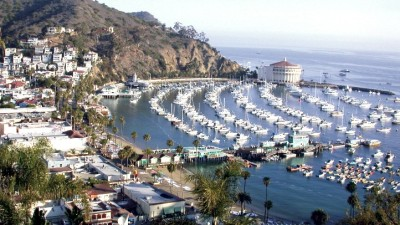 Catalina Art Fair & Exhibition