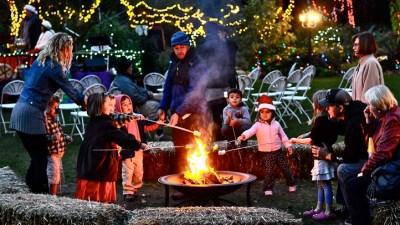 Sparkle Sparkle: Garden of Lights in Encinitas