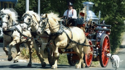 Gold Rush Days: Old Sactown's Historical Bash