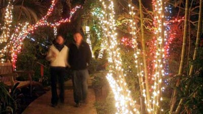 The Botanic Garden Twinkles Brightly