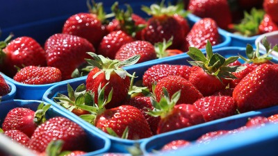 Strawberry Fest: Sweet Cooking Showdown