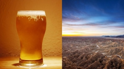 Anza-Borrego + Brews: Pints 4 the Park