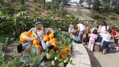 Family Fall Festival at San Diego Botanic Garden