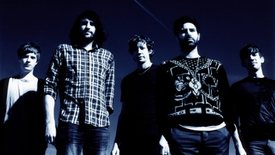 Foals Rush In