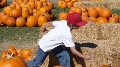 Pumpkin Days Ahead: Big Horse Corn Maze