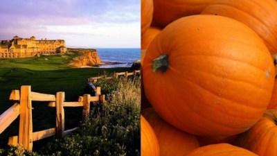 Autumn Pleasures Rule The Ritz-Carlton, Half Moon Bay