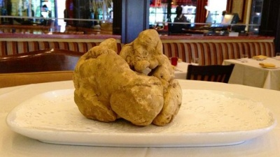 Meet Sin City's Newest Star: A Rare White Truffle
