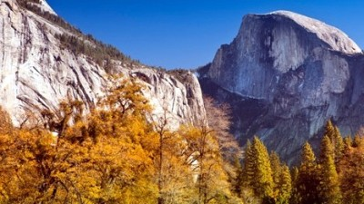 Golden Leaves, Half Dome
