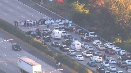 Protest Halts Traffic on NB I-5 in La Jolla
