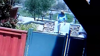 'Gate Greaser' Caught on Cam in Santee
