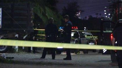 2 Die in Triple Shooting