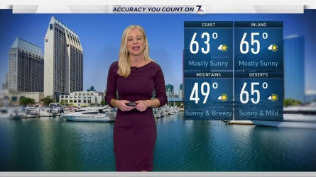Ashley Matthew's Weather Forecast for January 15, 2017