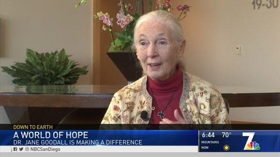 'Everyday You Live, You Make an Impact on The Planet': Dr  Jane Goodall in  San Diego