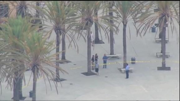 Raw Video: Westview High School Campus Vandalized   NBC 7 San Diego