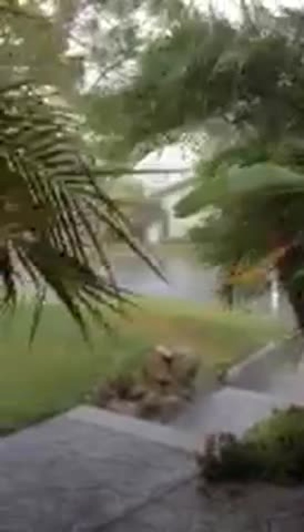 Raw Video: Wind and Rain on Mt Helix