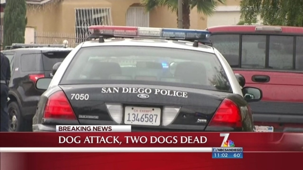 [DGO]3 People Attacked by Pit Bull Pack