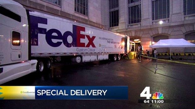 [DC] T. Rex Arrives in D.C.