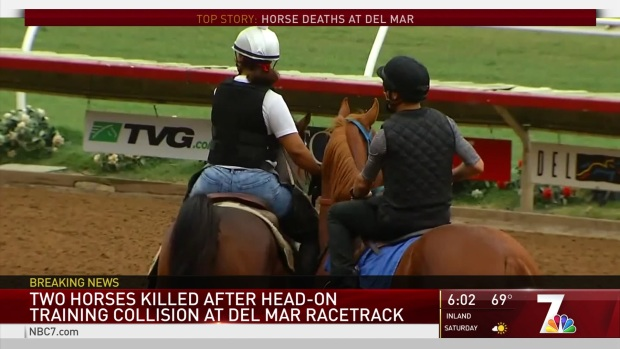 [DGO] 2 Horses Killed After Head-On Collision at Del Mar