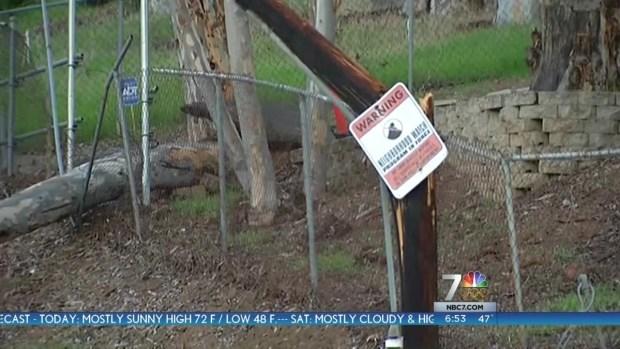 [DGO] Tree Knocks Down Telephone Line in El Cajon