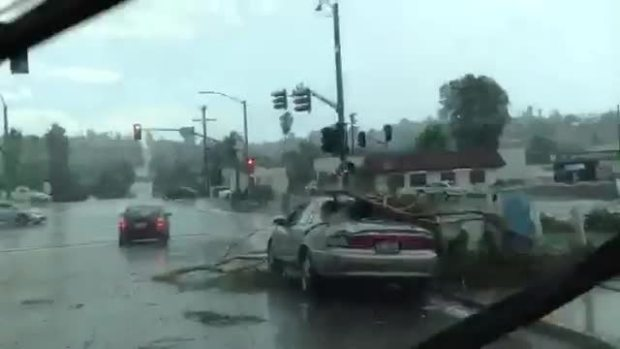 RAW VIDEO: Tree on Car in Spring Valley