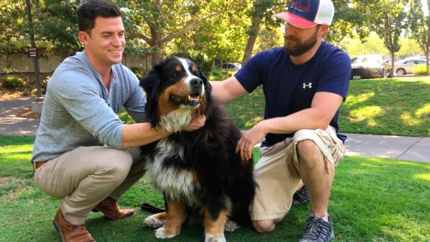 [NATL] Calif. Family Returns Home to Find Dog Still Alive