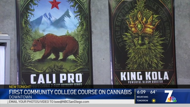 Community College Offers Course on How to Open a Budding Cannabis Business