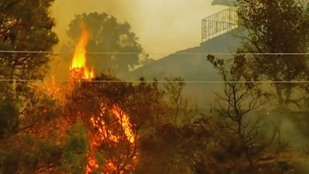 "[DGO] ""It's Really Messed Up"": Residents React to Cocos Fire Origin"