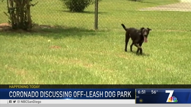 Coronado Discusses Off-Leash Dog Park