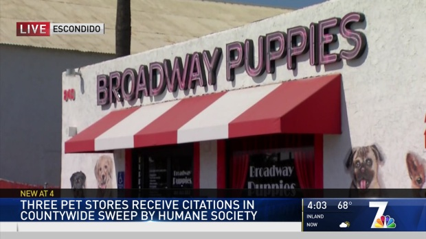 Three Pet Stores Receive Citations by Humane Society